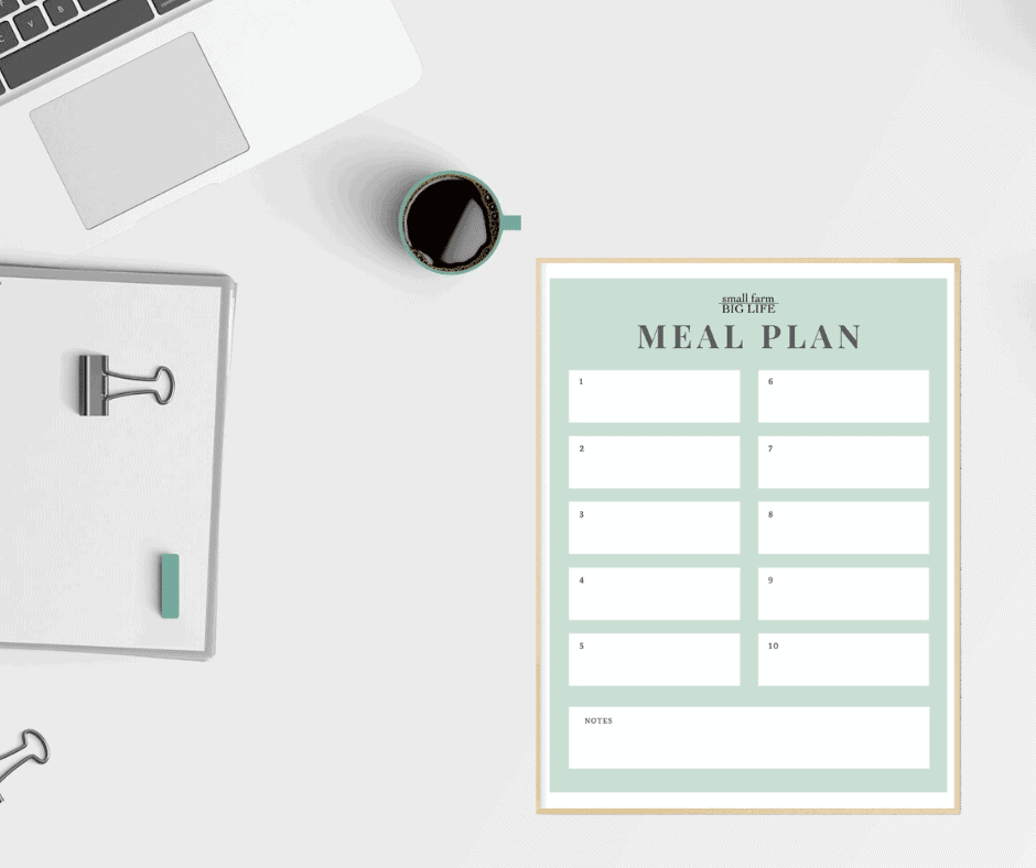 meal planning guide on a table with a cup of coffee