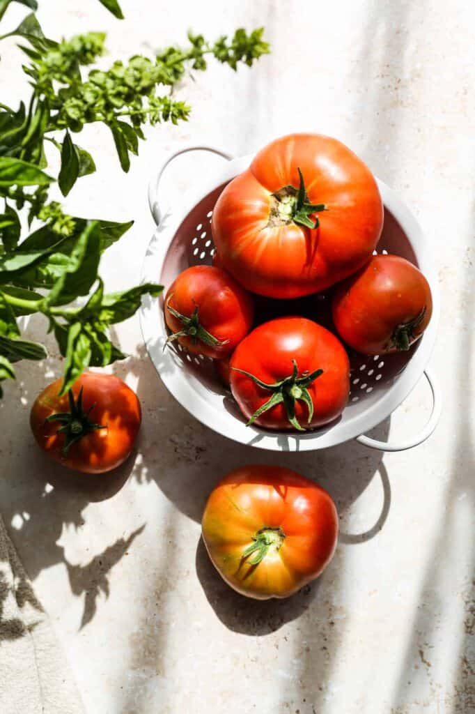 a colander of fresh tomatoes with a jar of fresh basil from my garden