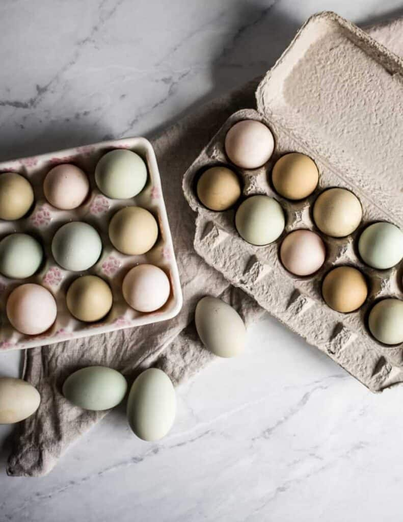 green, blue, brown and cream farm fresh eggs from our chickens in egg cartons