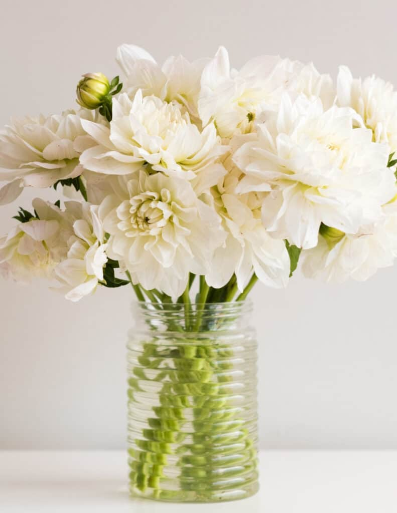 a glass full of white dahlia blooms is one of my favorite things