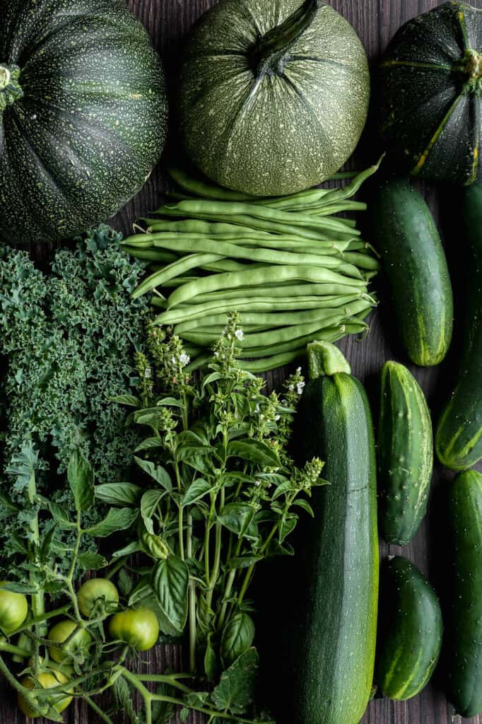 fresh zucchini, green beans, green tomatoes, kale, basil and cucumbers from my garden